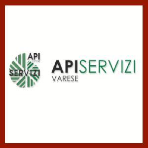 API Servizi